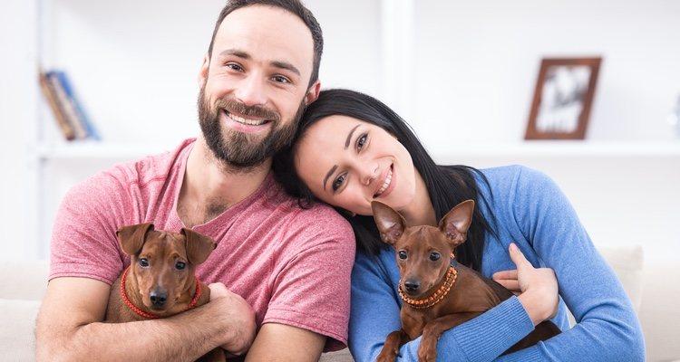 Tener un perro conlleva muchos beneficios a la pareja