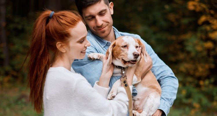 El nuevo estilo de vida de los jóvenes puede influir a la hora de tener un perro como mascota