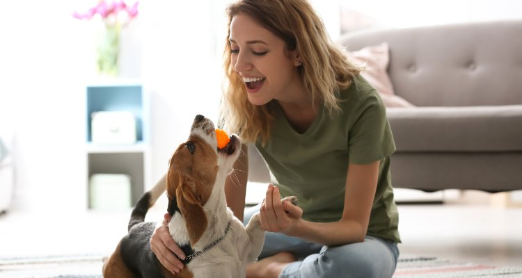 Son mucho los beneficios que conlleva tener una mascota en casa