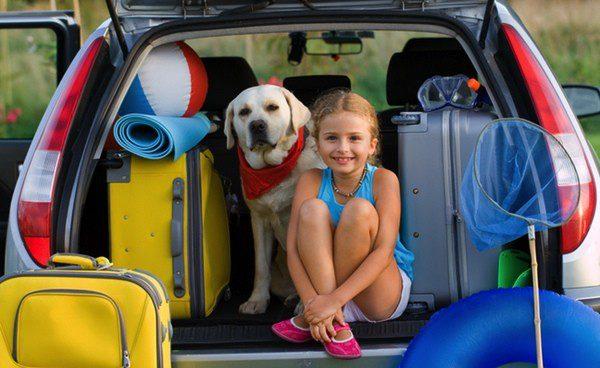 No poder viajar con tus mascotas ya no es un impedimento