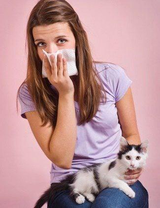 Estornudos y congestión: síntomas de alergia