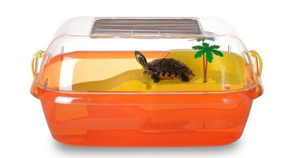 Hay que procurar que la tortuga tenga un acuario espacioso y adecuado