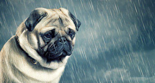 Los síntomas que padecen cuando están tristes