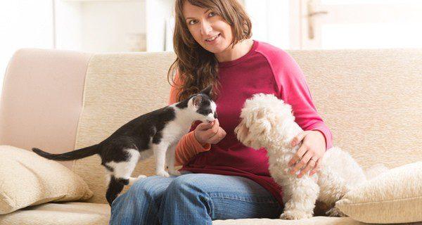 ¿Cómo superar la separación por muerte de tu mascota?
