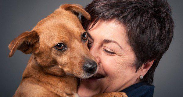 Pautas que debemos saber antes de comprar una mascota