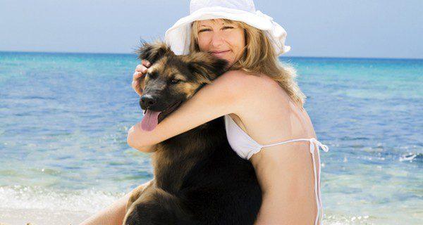 Consulta una guía de playas donde se permitan los perros