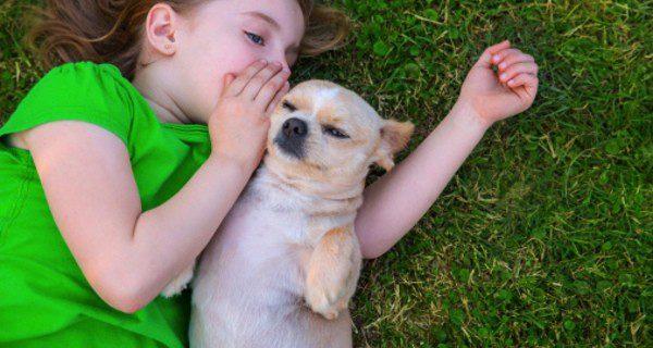 ¿Cuáles son las razas de perros más adecuadas para convivir con tus hijos?