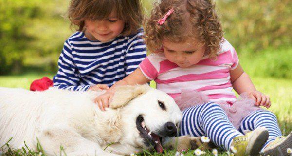 El perro será el mejor amigo de tus hijos