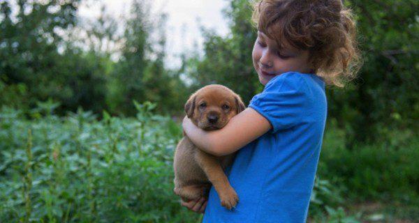 Ayuda a que tu hijo sea responsable con el animal