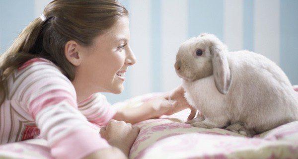 Los conejos llevan bien la soledad