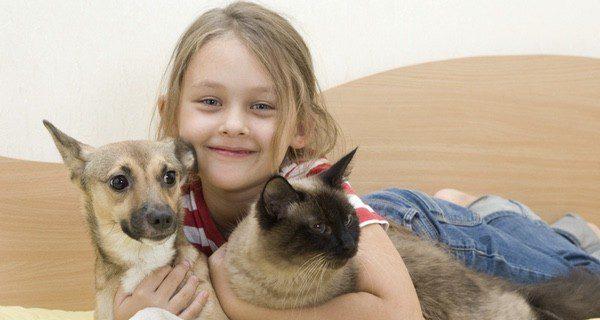 Los animales de compañía se convierten en un miembro más del círculo familiar