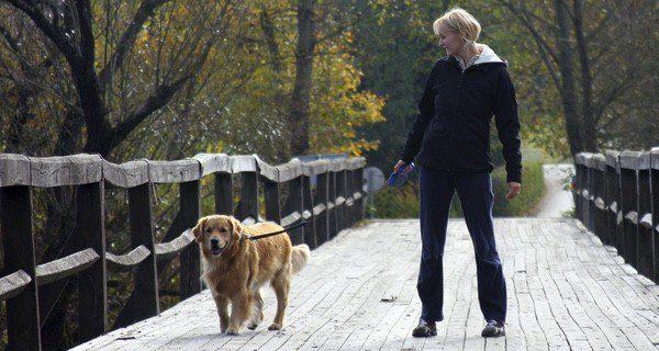 Deberás dar paseos largos de un mínimo de media hora cada día para que se sienta cansado y feliz