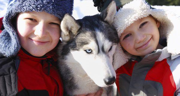 Un Husky bien educado se llevará de maravilla con los más pequeños de la casa