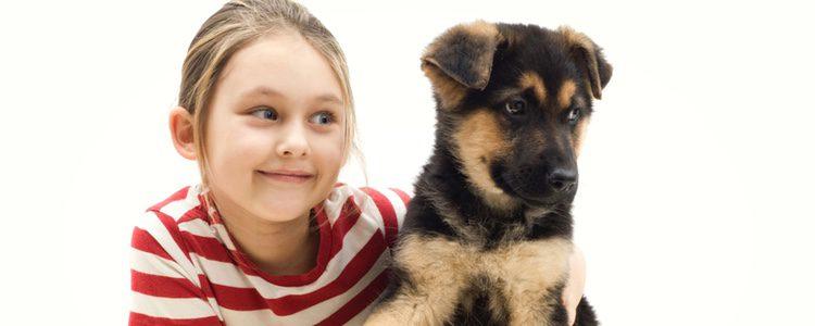 Perro muy leal desde pequeño