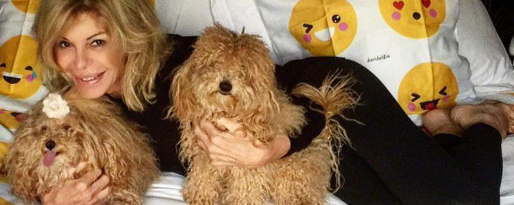 Bibiana Fernández con sus dos caniches, Hope y Joe / Instagram
