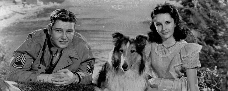 Elizabeth Taylor y Lassie en la película 'Lassie come home'