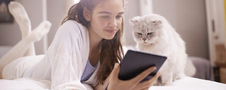 Tranquilos ypasivos, a los gatos les gustan los hábitos
