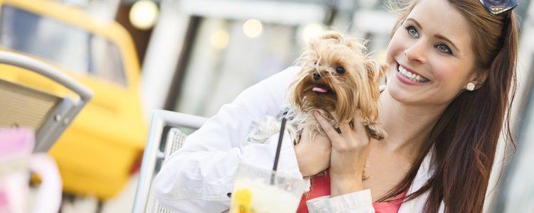Los perros podrán acompañar a sus dueños y comer cosas nuevas