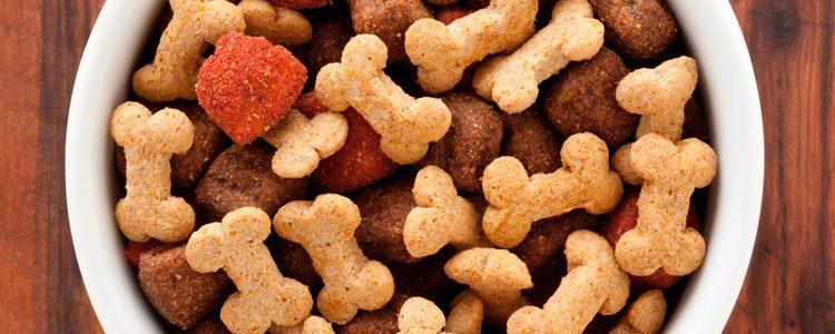 Existe gran variedad de galletas para perros que podemos darle a nuestra mascota