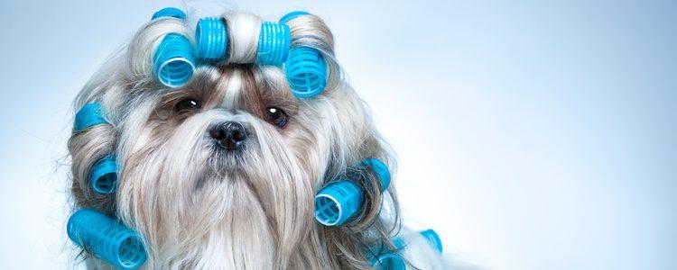 Es importante que el peluquero se tome su tiempo en el corte del pelo
