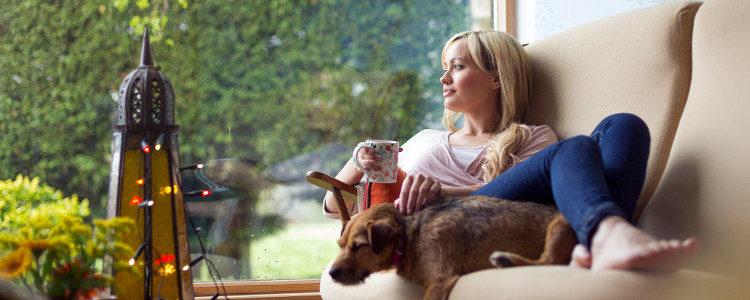 Muchos dueños disfrutan de su tiempo libre en el sofá junto a su mascota