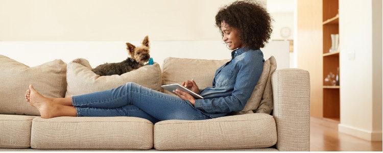 Los perros con buena conducta pueden compartir tiempo en el sofá
