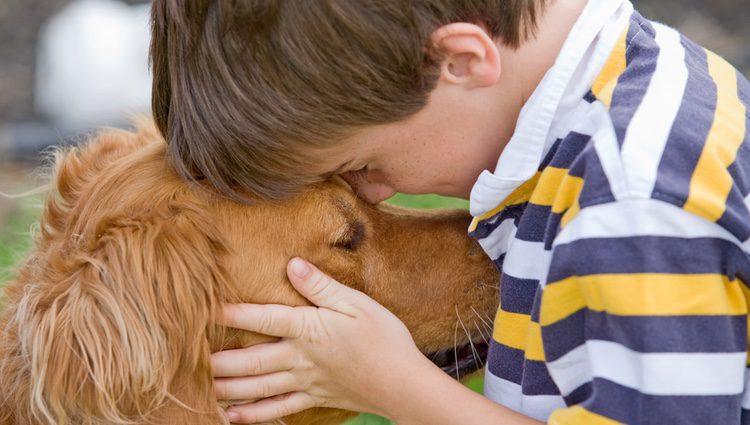 El cariño de un perro puede ayudar a los niños a integrarse mejor