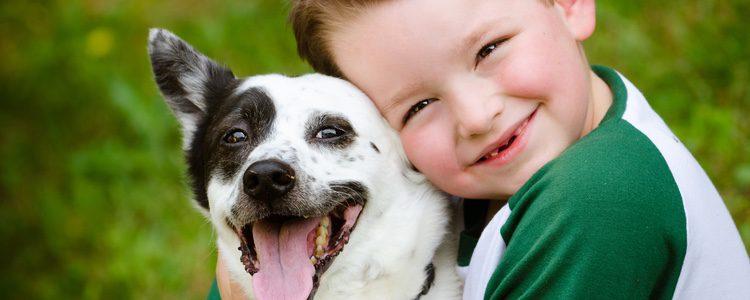 Los niños pequeños pueden adquirir valores al estar en contacto con una mascota