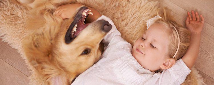La unión que tienen un niño pequeño y su mascota es algo innato e innegable