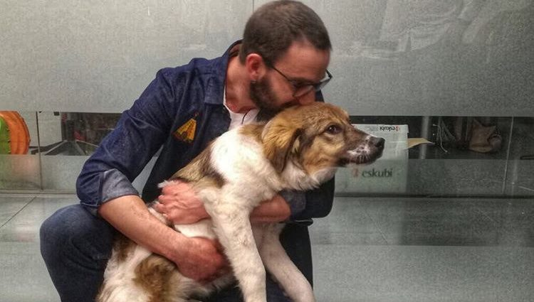 Dani Rovira ha hecho una importante labor ayudando a a animales a encontrar una familia