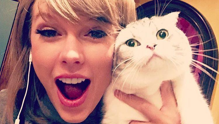 Meredith es una de las grandes protagonistas del Instagram de Taylor Swift
