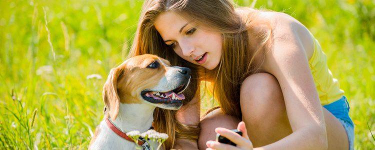 Ármate de mucha paciencia para realizar una fotografía a tu mascota