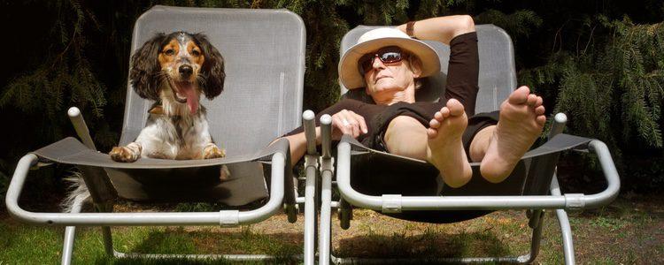 Los perros disfrutan tanto o más que las personas de tomar el sol