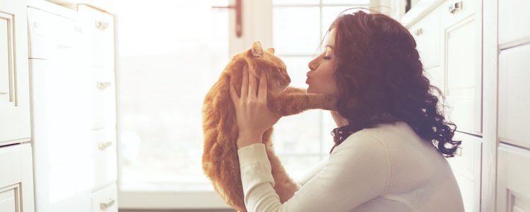 Los gatos también crean un fuerte vínculo con sus dueños