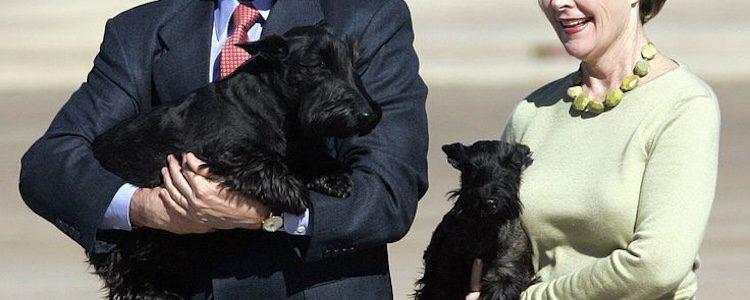 Bush y su mujer fueron con dos de sus tres perros