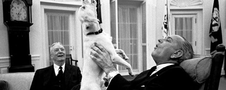 Johnson fue un gran amante de los animales