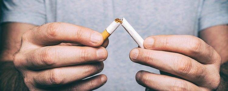 Con su lengua pueden arrastarr las sutancias nocivas del tabaco