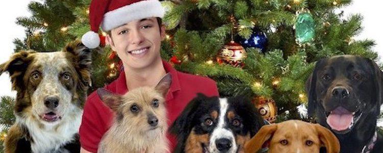 '12 días perros hasta Navidad'