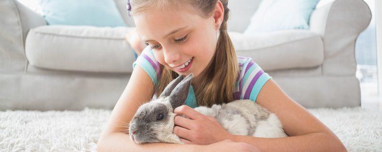 Los conejos son animales muy mimosos y les encanta que les acaricies