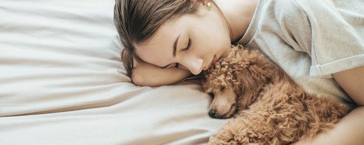 Si el vínculo con su mascota es muy grande pueden llegar a dormir con ella