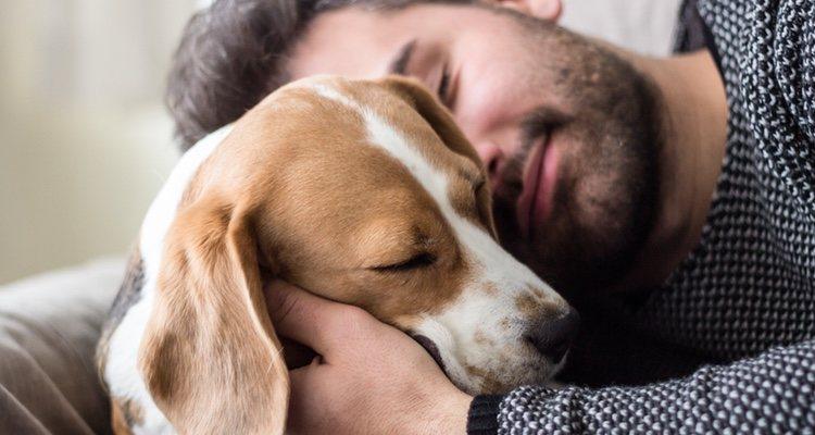Dormir con él puede acercarte mucho al corazón de tu perro