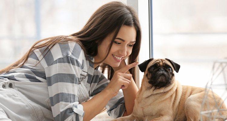 El contacto humano es muy importante para darle cariño a tu perro