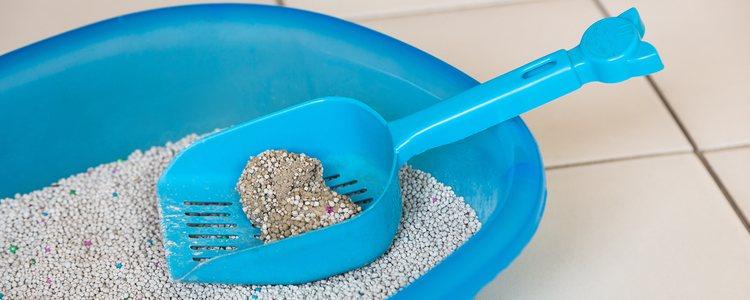 La arena casera será biodegradable y no contaminará