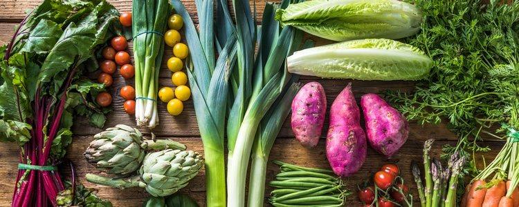 Las verduras son la comida más importante en la alimentación de un cerdo en miniatura
