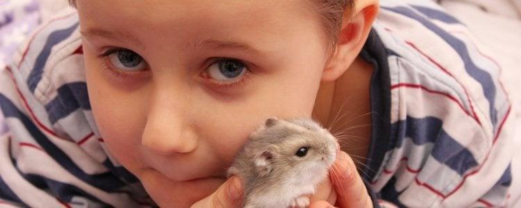 Conocer a tu mascota y sus necesidades será fundamental para poder mantenerla sana y feliz