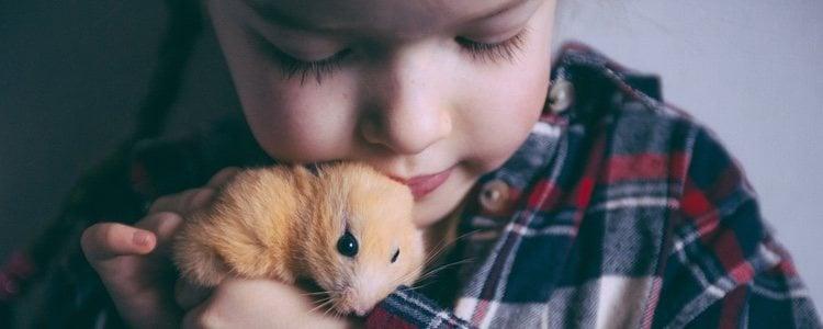 El cuidado de un hámster ayuda a los más pequeños de la casa a tener rutina y responsabilidad