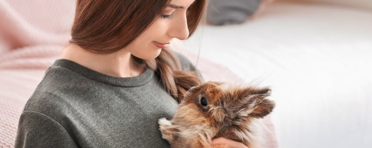 La rabia es una enfermedad que el conejo no se abstiene de poder padecer