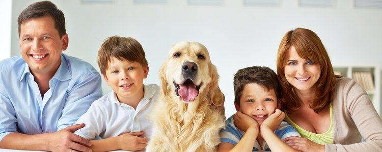 Es necesario conocer el ambiente familiar antes de tomar la decisión