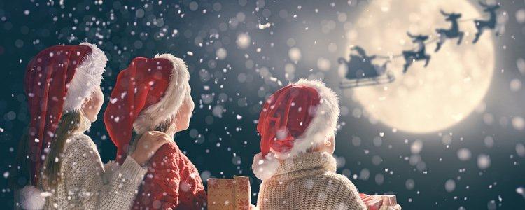 Estos animales tampoco serían nada sin Papá Noel