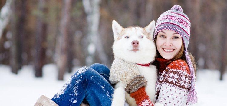 Los perros disfrutarán de la nieve como si volviesen a ser cachorros